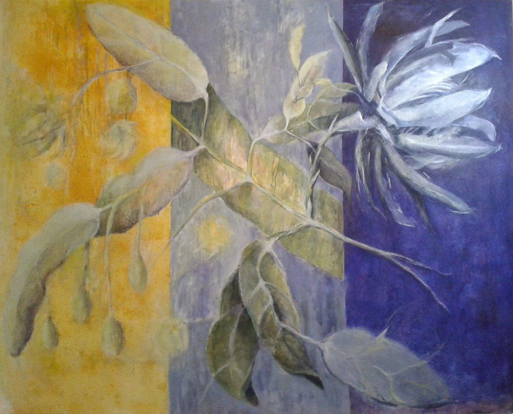 19112014-Solange-016